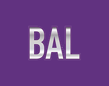 Happy New Year from BAL Group